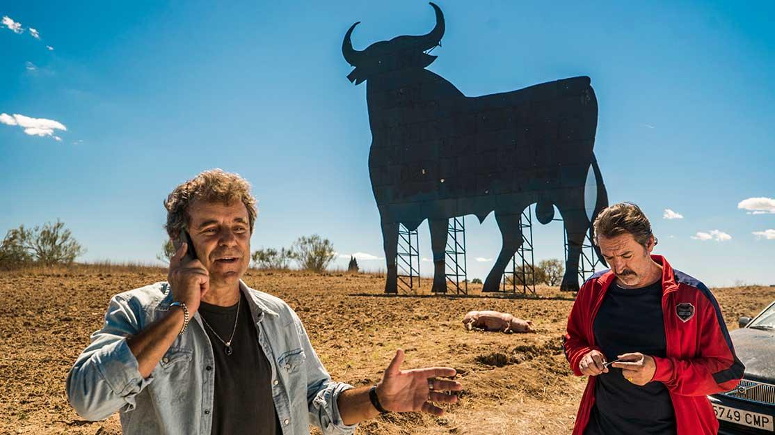 Cutting the bull